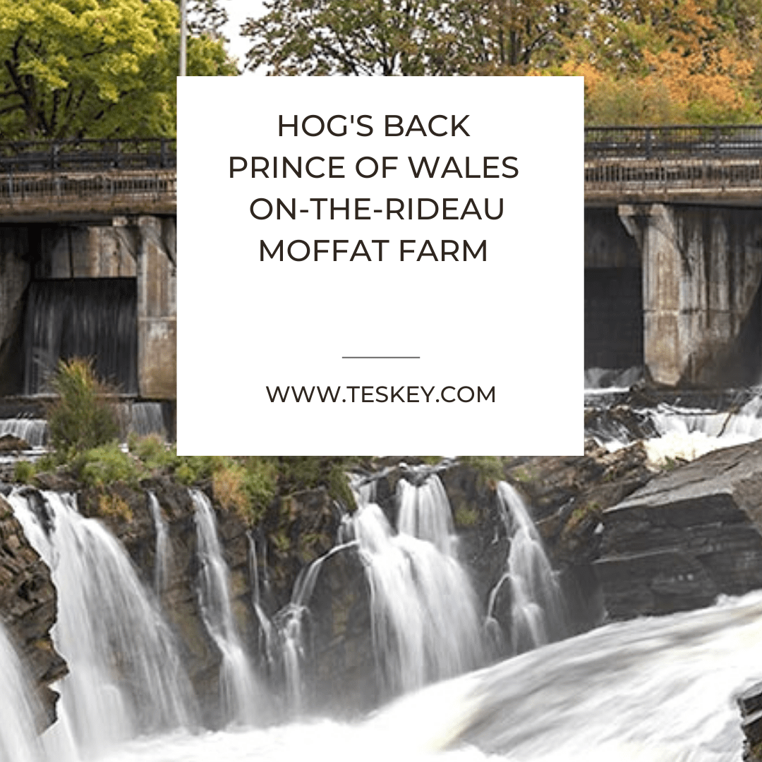 Hogs Back – Prince Of Wales On The Rideau – Moffat Farm
